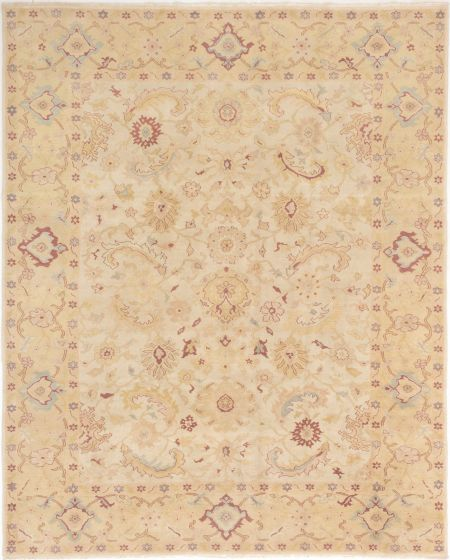 Bordered  Transitional Ivory Area rug 6x9 Turkish Hand-knotted 280844
