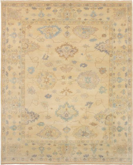 Bordered  Traditional Ivory Area rug 6x9 Indian Hand-knotted 271983