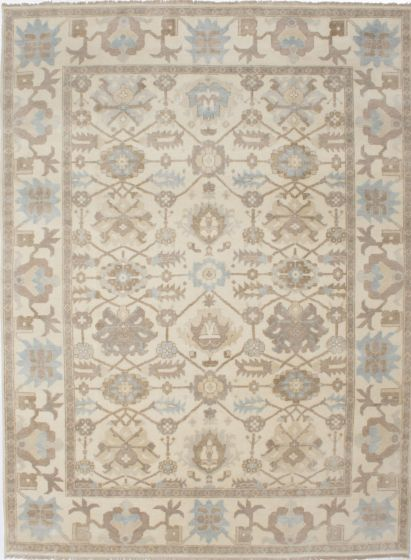 Traditional Blue Area rug 9x12 Indian Hand-knotted 207405