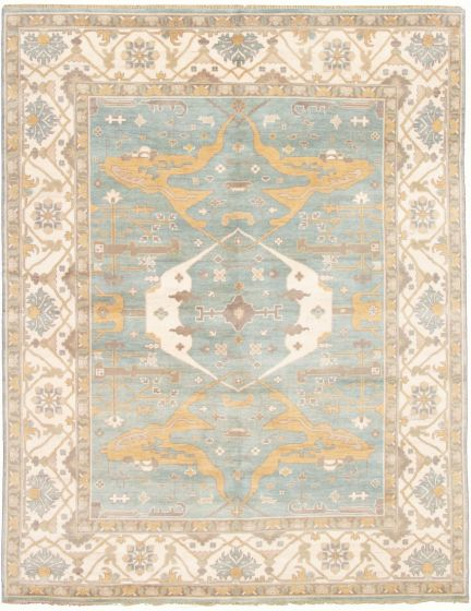 Bordered  Traditional Blue Area rug 9x12 Indian Hand-knotted 331920