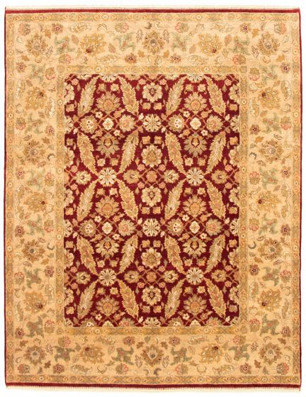 Bordered  Traditional Red Area rug 6x9 Indian Hand-knotted 335510