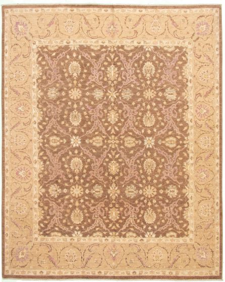 Bordered  Traditional Brown Area rug 6x9 Pakistani Hand-knotted 330546