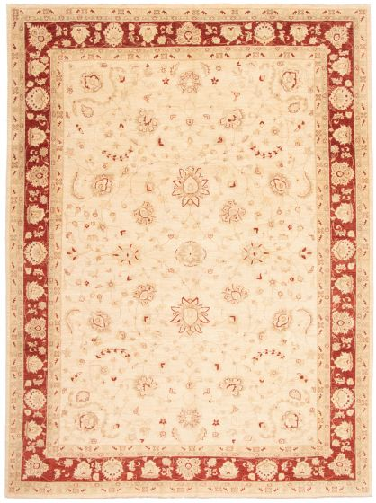 Bordered  Traditional Ivory Area rug 10x14 Afghan Hand-knotted 338475