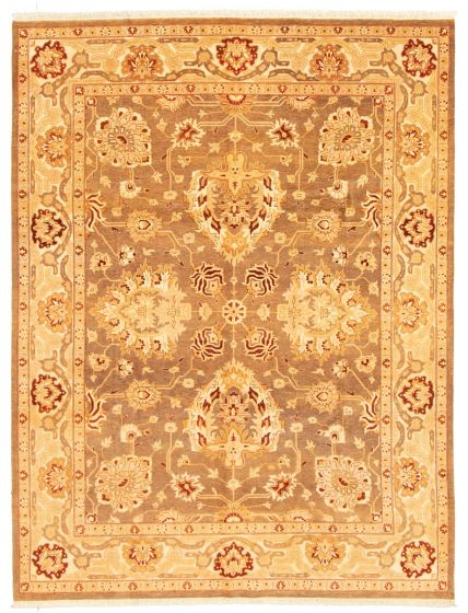Bordered  Traditional Brown Area rug 6x9 Pakistani Hand-knotted 331292