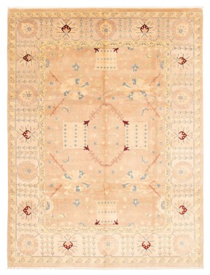 Bordered  Traditional Brown Area rug 9x12 Pakistani Hand-knotted 362969
