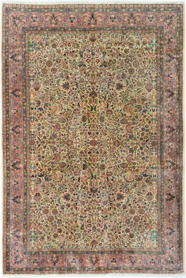 Bordered  Traditional Ivory Area rug 6x9 Turkish Hand-knotted 281053