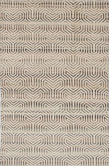 Transitional Ivory Area rug 5x8 Indian Hand-knotted 222109