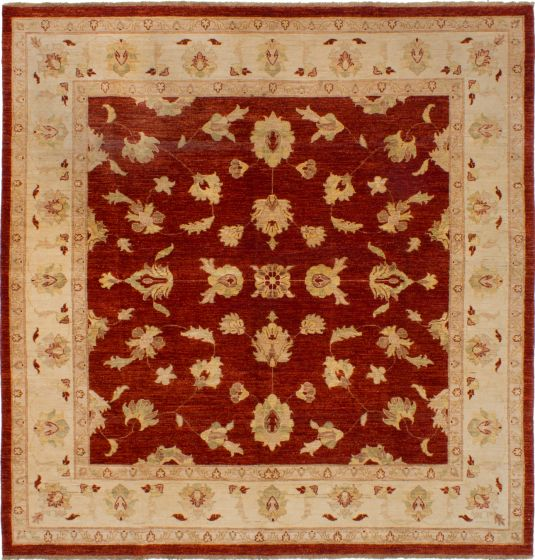 Bordered  Traditional Brown Area rug Square Afghan Hand-knotted 268659