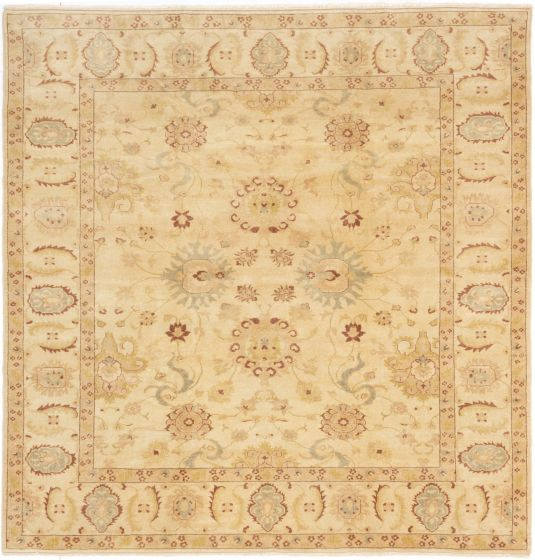Bordered  Transitional Ivory Area rug Square Turkish Hand-knotted 281091