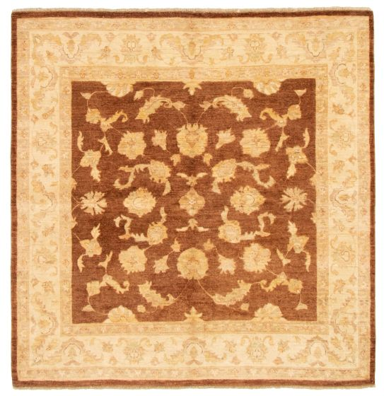 Bordered  Traditional Brown Area rug Square Afghan Hand-knotted 331528