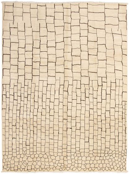 Casual  Transitional Ivory Area rug 9x12 Indian Hand-knotted 294097