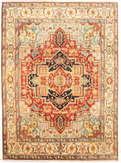 Bordered  Traditional Brown Area rug 9x12 Indian Hand-knotted 331265
