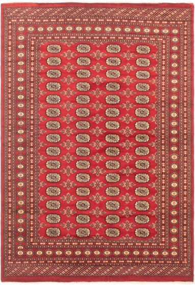 Bordered  Tribal Red Area rug 5x8 Pakistani Hand-knotted 305661