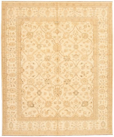 Bordered  Traditional Ivory Area rug 6x9 Afghan Hand-knotted 330651