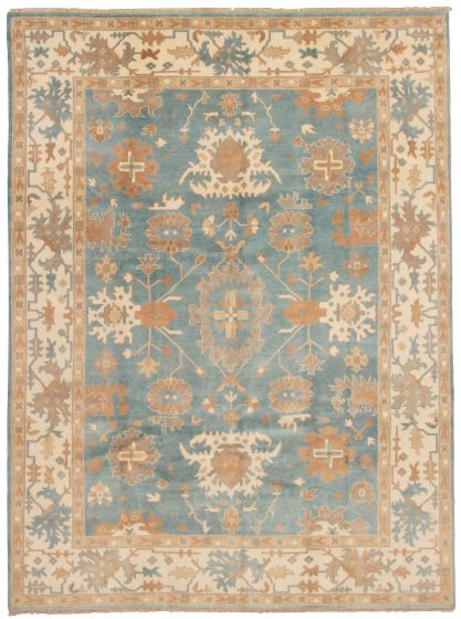 Bordered  Traditional Blue Area rug 9x12 Indian Hand-knotted 337589