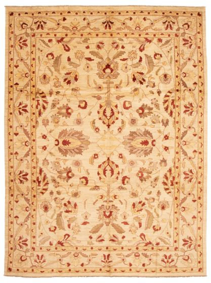 Bordered  Traditional Ivory Area rug 10x14 Afghan Hand-knotted 338391