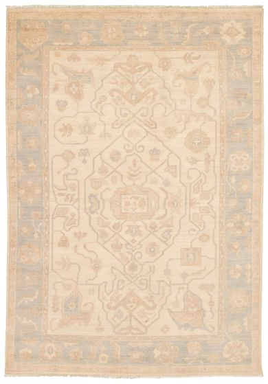 Bordered  Traditional Ivory Area rug 5x8 Pakistani Hand-knotted 339036