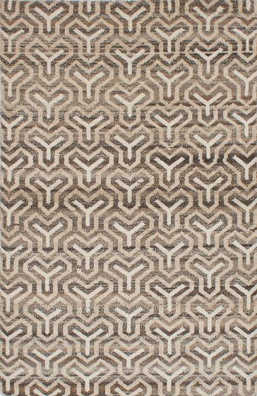 Transitional Ivory Area rug 5x8 Indian Hand-knotted 222100