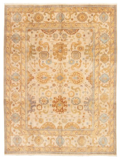 Bordered  Traditional Ivory Area rug 9x12 Indian Hand-knotted 331262