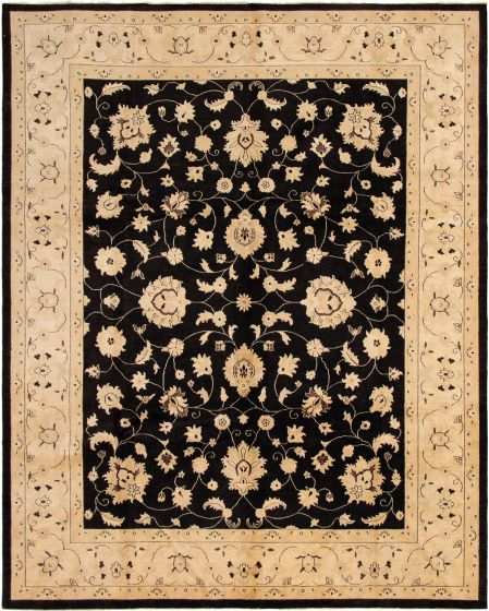Bordered  Traditional Black Area rug 9x12 Pakistani Hand-knotted 294021