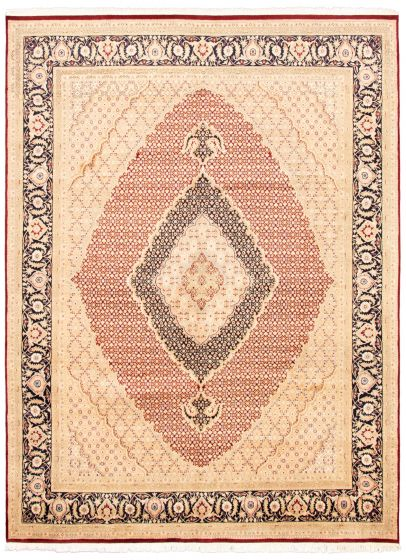 Bordered  Traditional Ivory Area rug 9x12 Pakistani Hand-knotted 336046