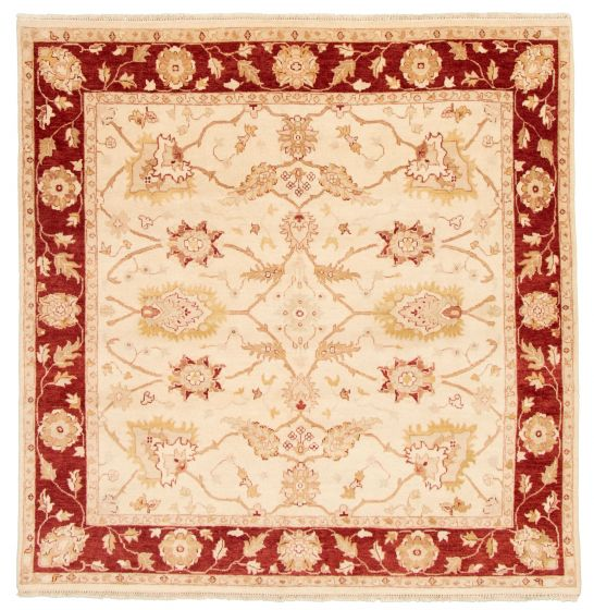 Bordered  Traditional Ivory Area rug Square Afghan Hand-knotted 331503