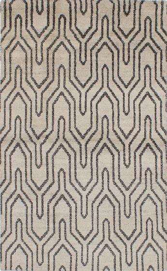 Transitional Grey Area rug 5x8 Indian Hand-knotted 222098