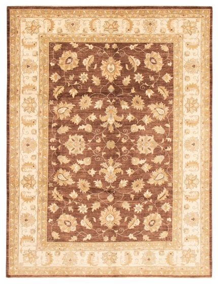 Bordered  Traditional Brown Area rug 9x12 Pakistani Hand-knotted 362953