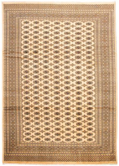 Bordered  Tribal Ivory Area rug 10x14 Pakistani Hand-knotted 330019