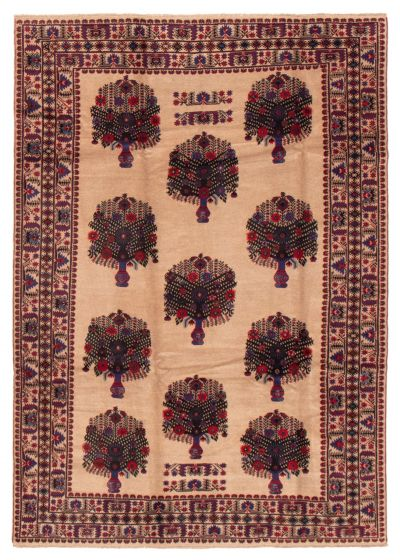 Bordered  Tribal Brown Area rug 6x9 Afghan Hand-knotted 358201