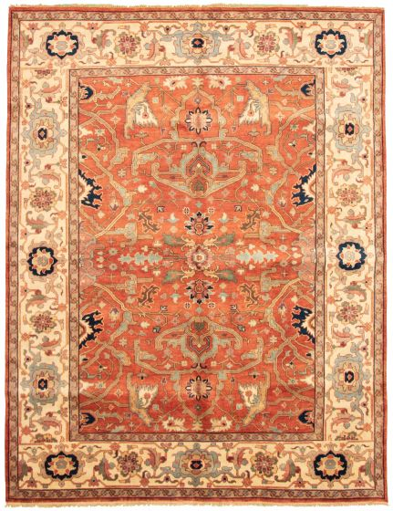 Bordered  Traditional Brown Area rug 9x12 Indian Hand-knotted 331896
