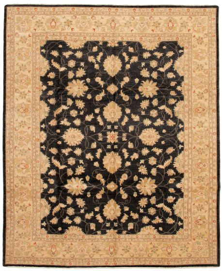 Bordered  Traditional Black Area rug 6x9 Pakistani Hand-knotted 330658