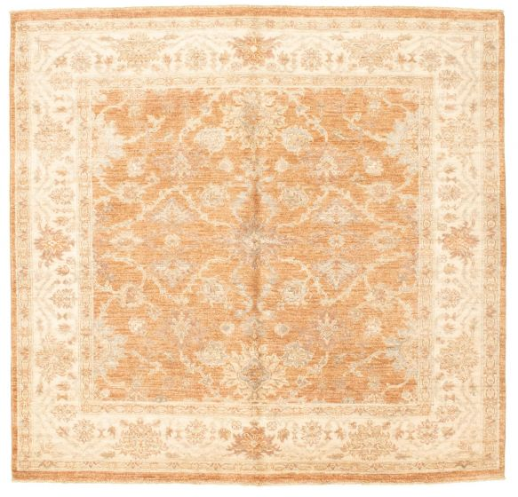 Bordered  Traditional Brown Area rug Square Afghan Hand-knotted 331305