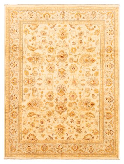 Bordered  Traditional Ivory Area rug 9x12 Pakistani Hand-knotted 362973