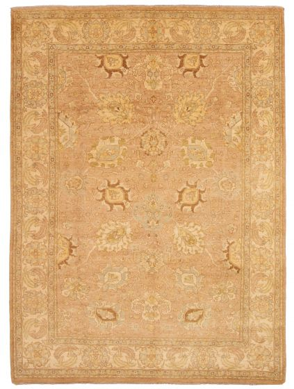 Bordered  Traditional Brown Area rug 9x12 Pakistani Hand-knotted 331175