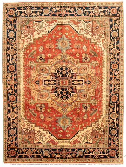 Bordered  Traditional Brown Area rug 9x12 Indian Hand-knotted 331266