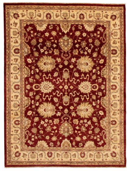 Bordered  Traditional Red Area rug 9x12 Pakistani Hand-knotted 337583