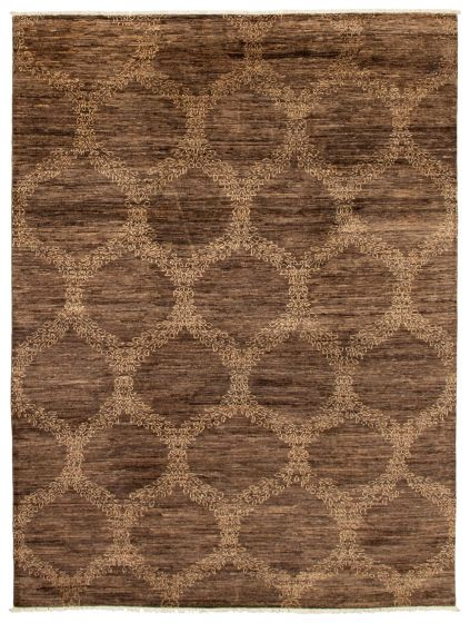 Casual  Transitional Brown Area rug 6x9 Pakistani Hand-knotted 339042