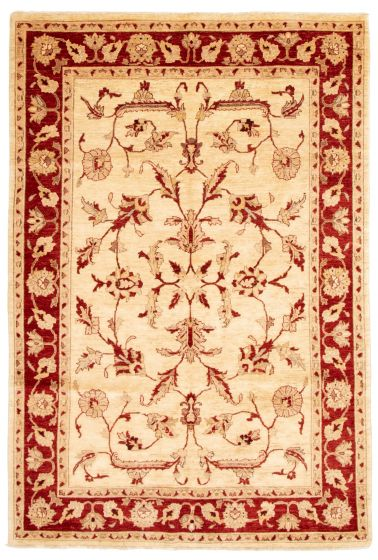 Bordered  Traditional Ivory Area rug 6x9 Afghan Hand-knotted 331491