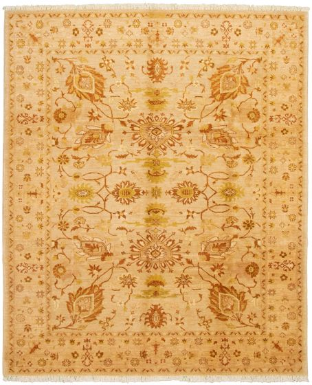 Bordered  Traditional Ivory Area rug 6x9 Pakistani Hand-knotted 330628