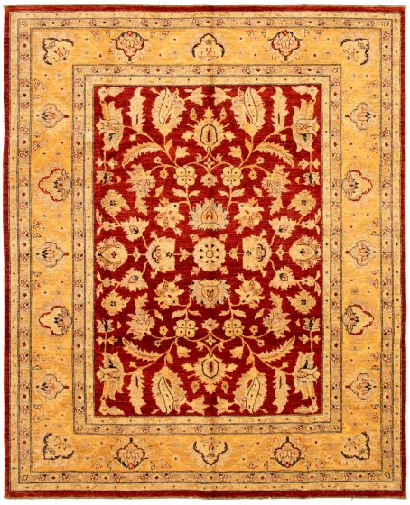 Bordered  Traditional Red Area rug 6x9 Pakistani Hand-knotted 330655