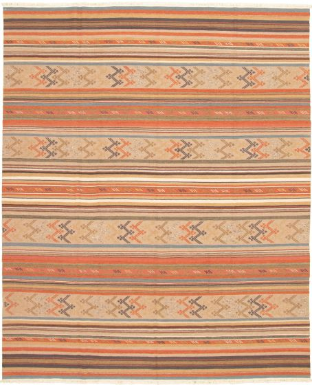 Bohemian  Transitional Brown Area rug 6x9 Turkish Flat-weave 335876