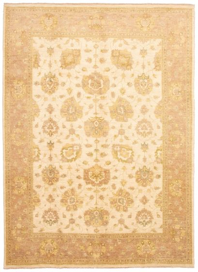 Bordered  Traditional Ivory Area rug 9x12 Pakistani Hand-knotted 330540