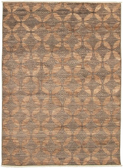 Casual  Transitional Brown Area rug 5x8 Pakistani Hand-knotted 339013