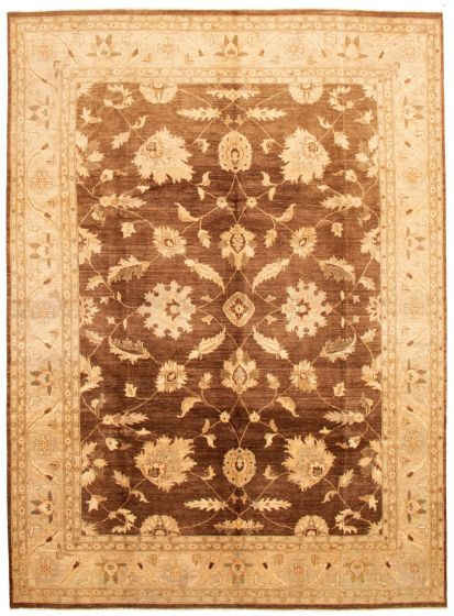 Bordered  Traditional Brown Area rug 9x12 Afghan Hand-knotted 336069
