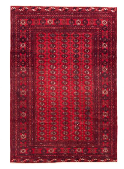 Bordered  Tribal Red Area rug 6x9 Afghan Hand-knotted 342266