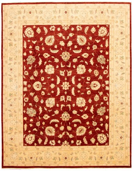 Bordered  Traditional Red Area rug 9x12 Afghan Hand-knotted 330592