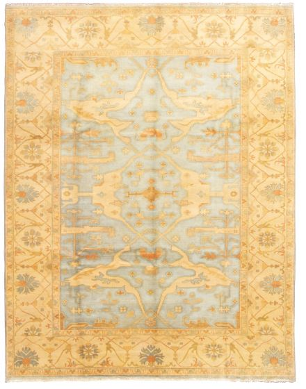 Bordered  Traditional Blue Area rug 9x12 Indian Hand-knotted 331321