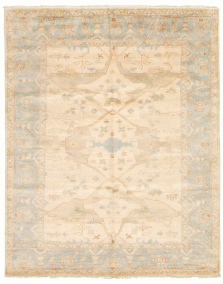 Bordered  Traditional Ivory Area rug 6x9 Indian Hand-knotted 331908
