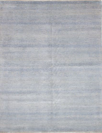 Transitional Blue Area rug 9x12 Indian Hand-knotted 223778